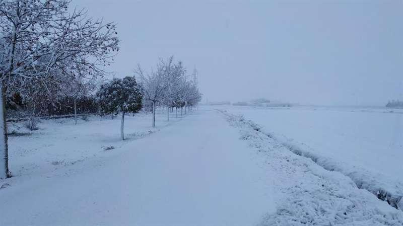 Término municipal de Villena nevado, en una imagen compartida en redes sociales por Estaciones meteorológicas de Villena (Meteo Villena).