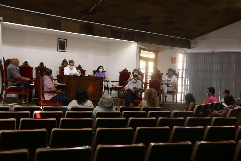 Sesión plenaria de julio