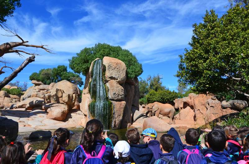Grupo escolar en el lago de elefantes