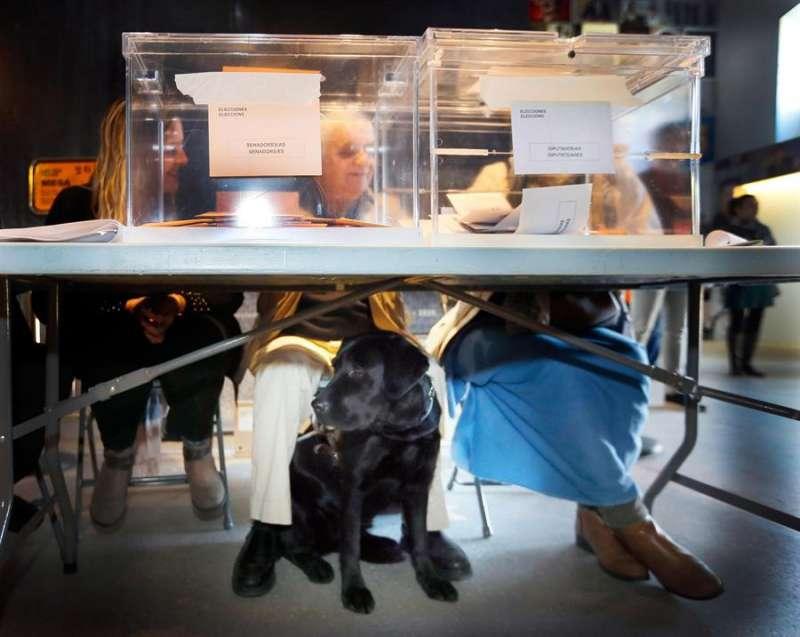 El invidente César Puente Fuente preside una mesa electoral en la ciudad de Alicante con la ayuda de una amiga que le facilita la identificación de cada votante. EFE/Manuel Lorenzo