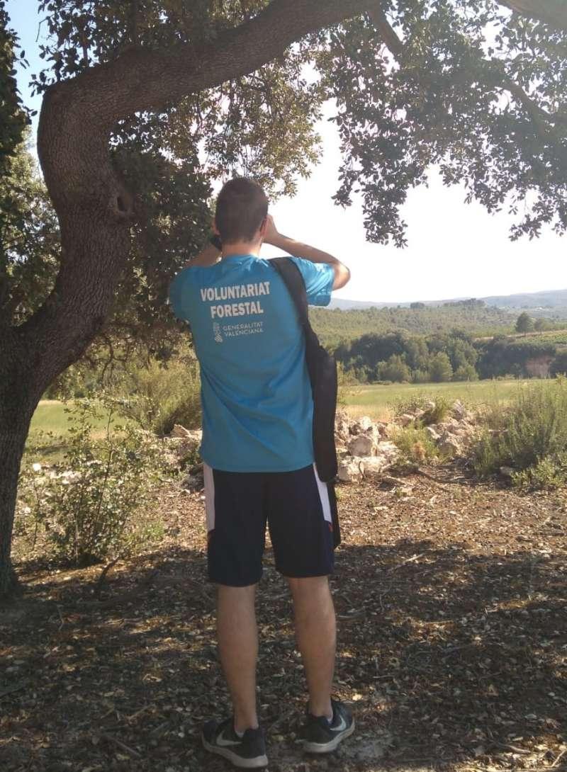 Voluntariado forestal durante una de sus labores. EPDA