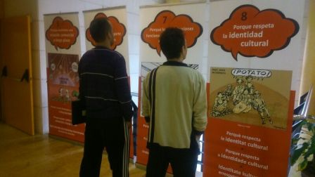 Imagen de la muestra. FOTO: EPDA