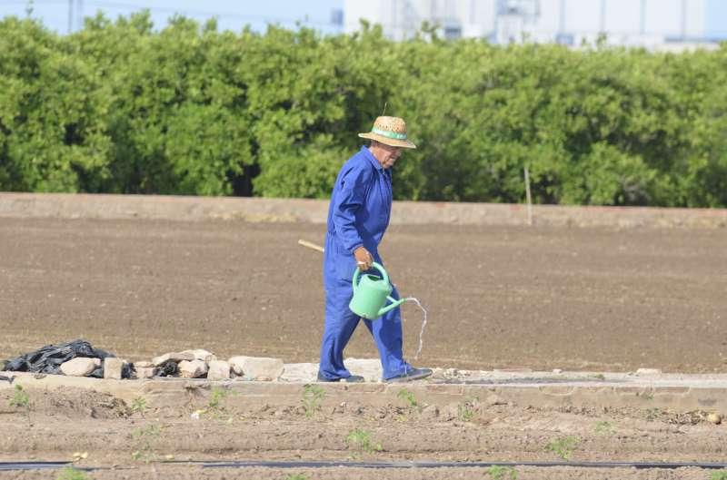 Agricultor trabajando en el campo.