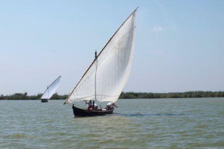 Catarroja acoge el tradicional Concurso de Vela Latina, en el que participarán cerca de cuarenta embarcaciones. Foto: EPDA.