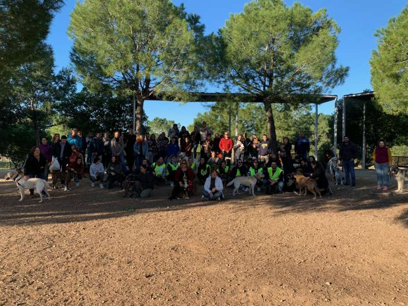 Curso de obediencia canina en Paterna. EPDA