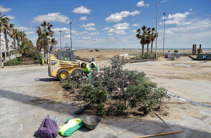 Numerosos operarios y maquinaria trabajan en las playas de La Malvarrosa y Las Arenas de València para retirar toda la arena que cubría el paseo marítimo y recuperar las playas para los próximos puentes festivos. EFE
