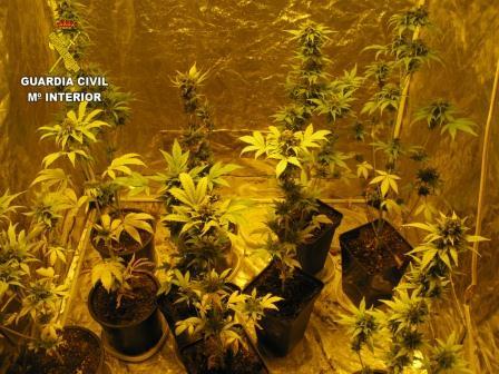 Imagen de la Guardia Civil sobre la droga incautada.