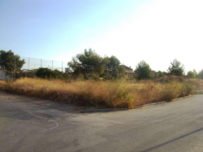 Una de las parcelas requeridas para su limpieza por el Ayuntamiento