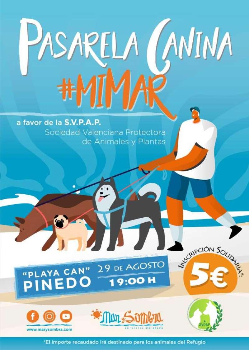 La playa de perros de Pinedo acoge la primera pasarela canina solidaria. EFE