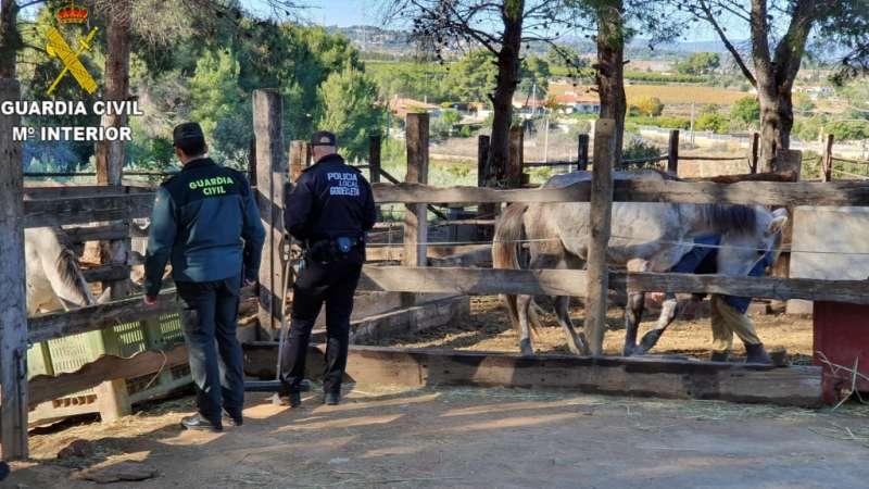 Agentes inspeccionan el recintoa. EPDA