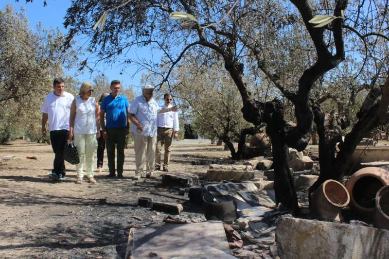 Visita de los diputados a la zona del incendio
