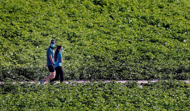 Personas realizan deporte por la huerta