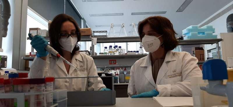 Investigadoras trabajan para detectar el virus. / EPDA