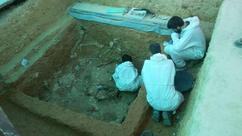 Los arqueólogos trabajan en una de las fosas del cementerio de Paterna. / EPDA