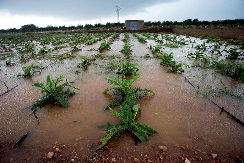 Campos anegados tras un temporal de lluvia. EFE/Castelló/Archivo