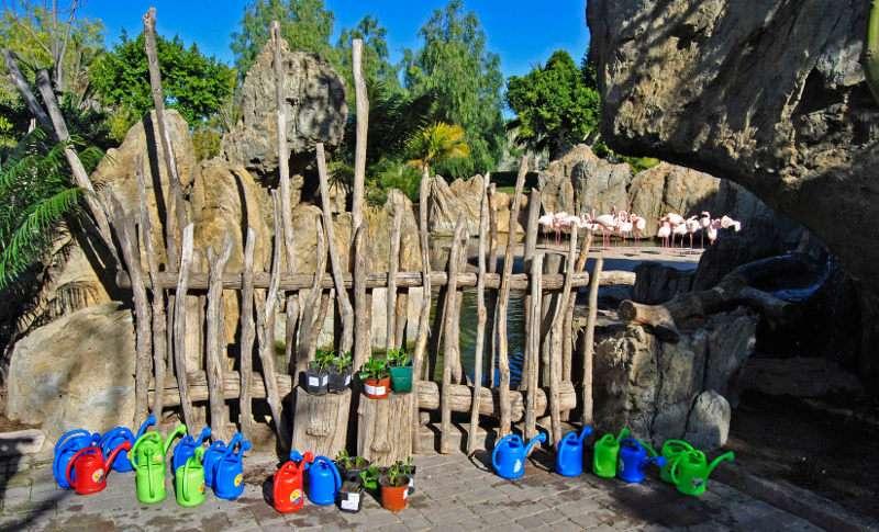 Taller de esquejes en el Bioparc Valencia, con motivo del Día del Árbol