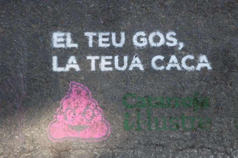 Campanya de concienciació de neteja viària de Catarroja. EPDA