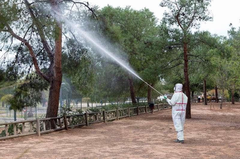 Tratamiento procesionaria parque de La Canaleta de Mislata. EPDA