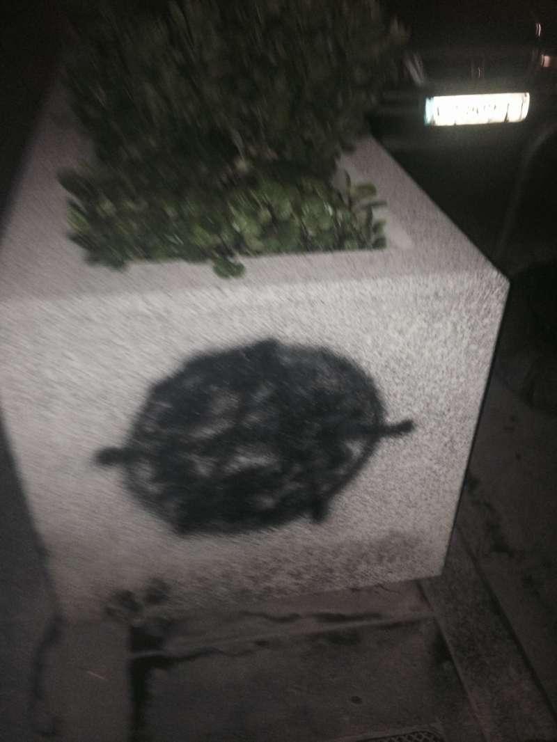 Una de las jardineras de Ruzafa con el símbolo de la Anarquía. FOTO EPDA