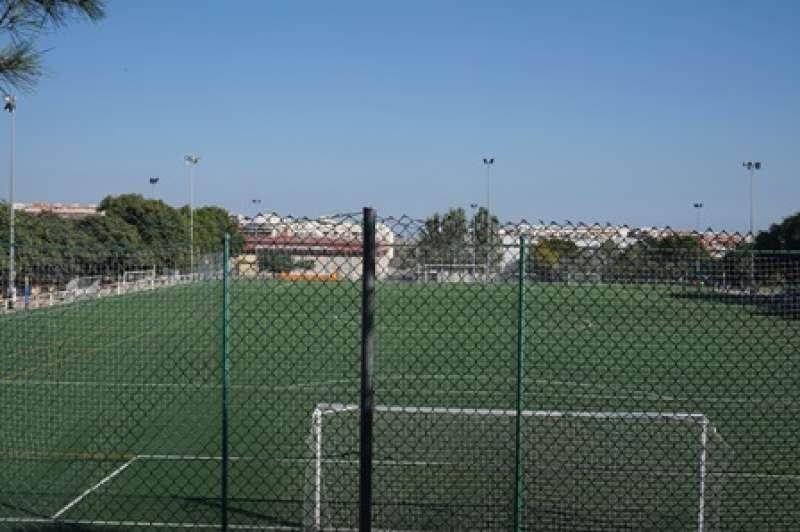 Césped de los campos de fútbol. EPDA