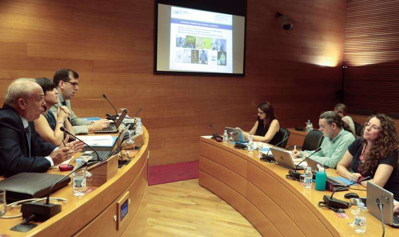 Comisión de Les Corts Valenciane. EFE/Archivo