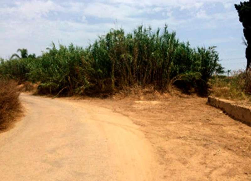 Caminos rurales de Quart de Poblet. EPDA