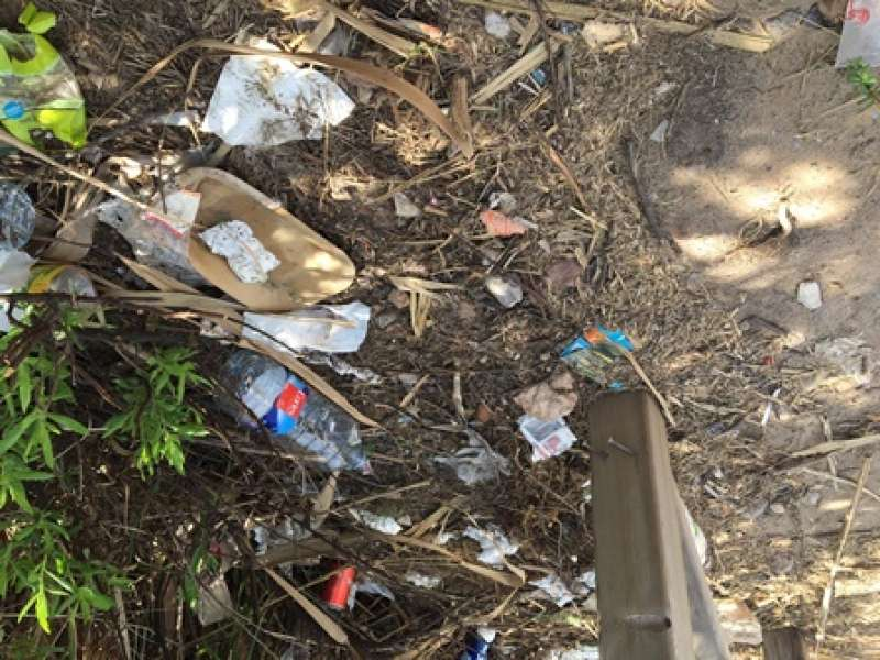 Basura acumulada en la playa de Massalfassar. EPDA