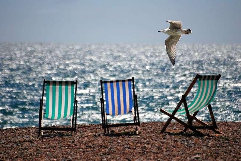 Una gaviota sobrevuela una playa. EPDA