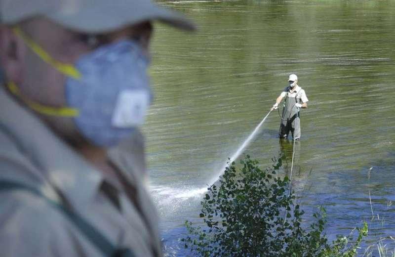 Dos operarios trabajan en las fumigaciones del río Segre para combatir la proliferación de la mosca negra. EFE
