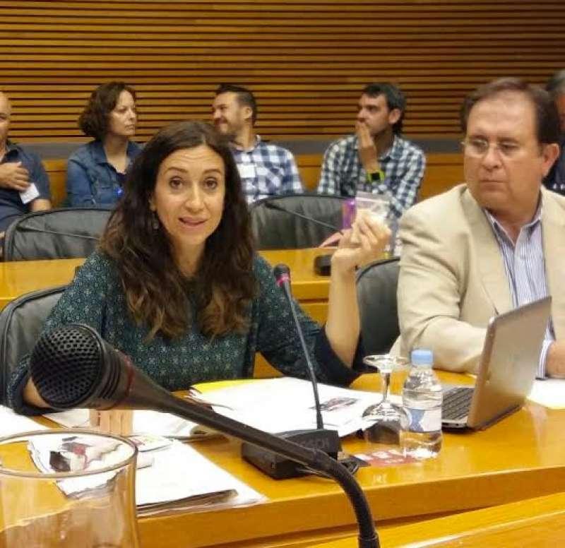 La diputada i portaveu de Compromís a la comissió de Sanitat a les Corts Valencianes, Isaura Navarro