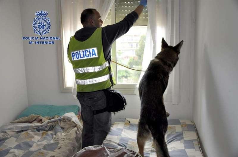 Fotografía de la Policía Nacional del transcurso de una operación. EFE/Policía Nacional/Archivo