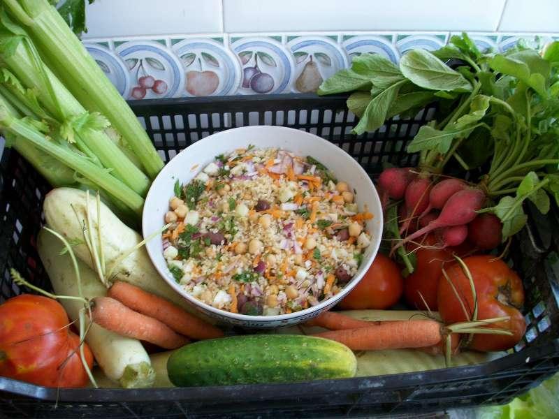 Alimentos de Primavera. EPDA
