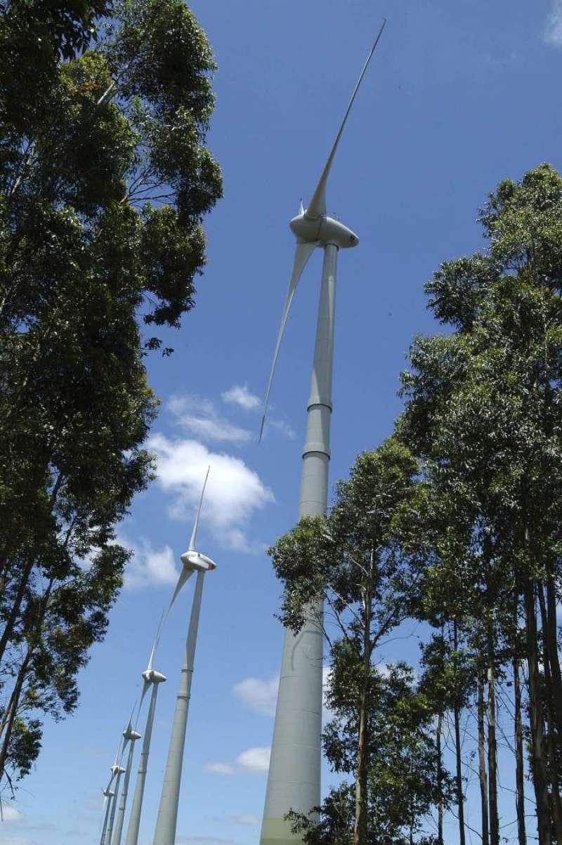 Vista de varios aerogeneradores en un parque eólico. EFE/Archivo