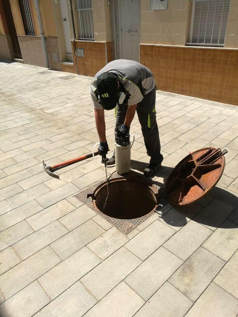 La empresa en uno de los controles contra las plagas de insectos en Sagunt. -EPDA