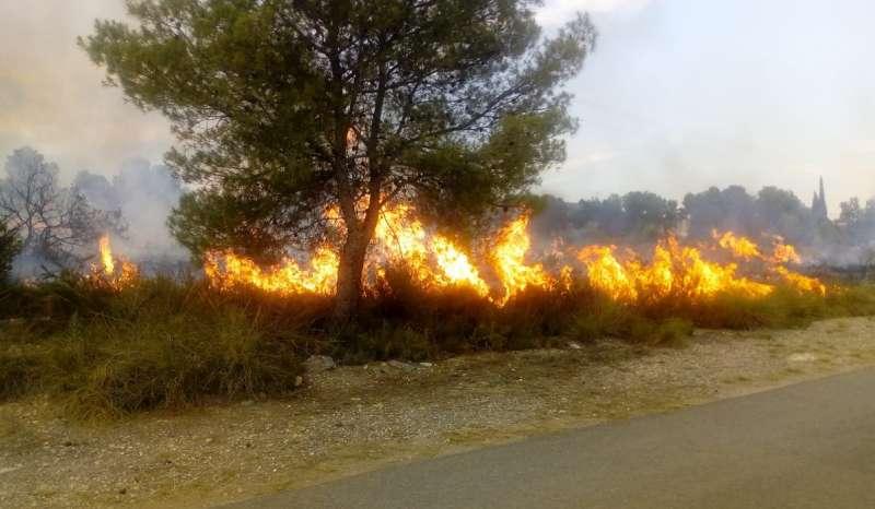 Incendi Monrabana. EPDA