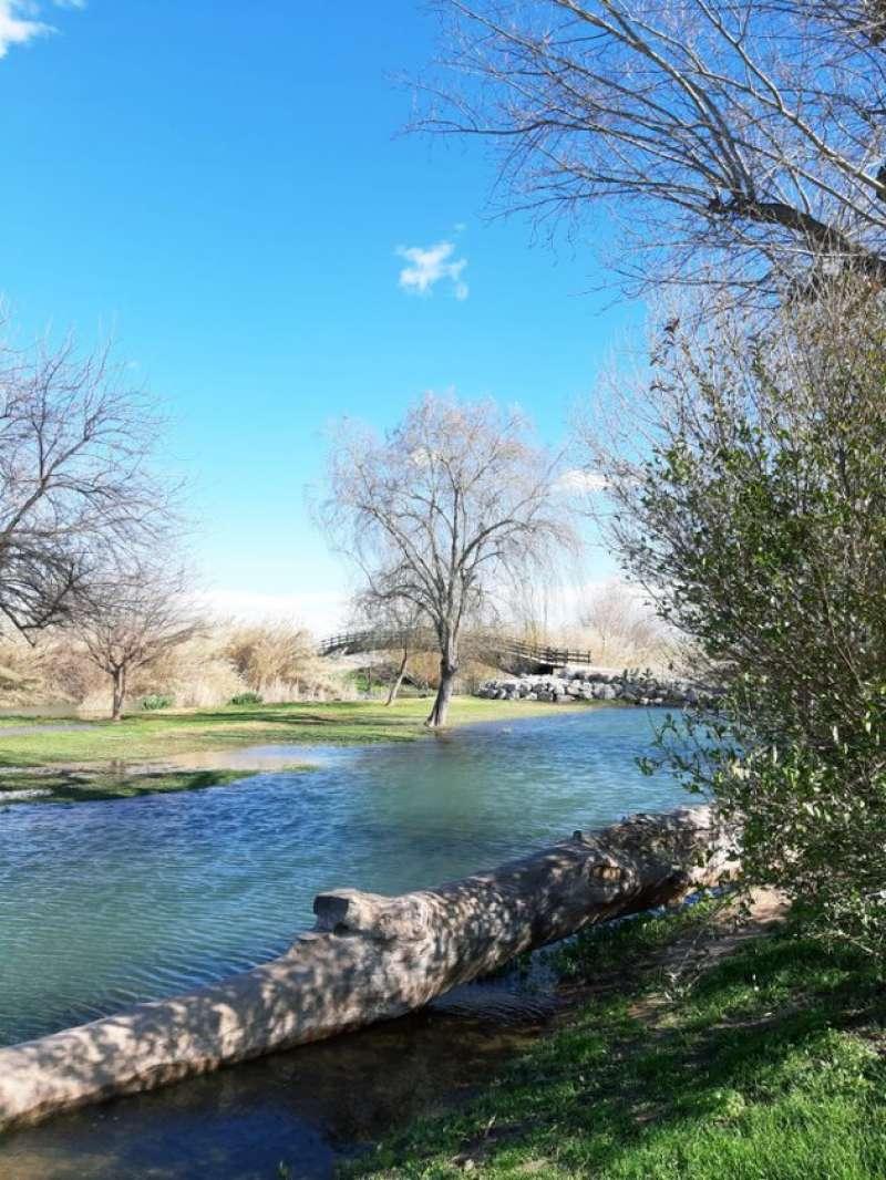 Cauce del río
