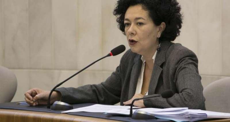 La diputada d?EUPV Raquel Pérez