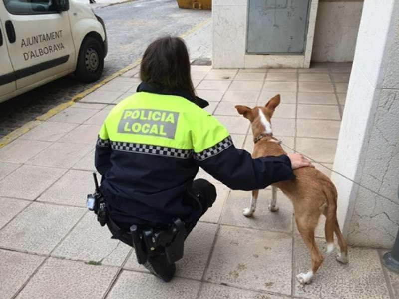 Una agente con la perrita rescatada en Alboraya. EPDA