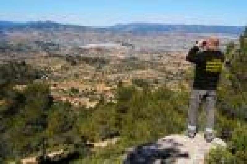 Brigadas forestales en vigilancia