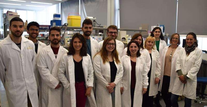 Un estudio abre una nueva vía para regenerar tejidos tras una lesión medular Equipo de investigación que ha realizado el estudio. EFE/Generalitat