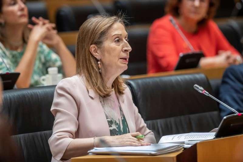 La diputada del PP, Ana Pastor durante su intervención en la Comisión para la Reconstrucción Social y Económica del Congreso. EFE