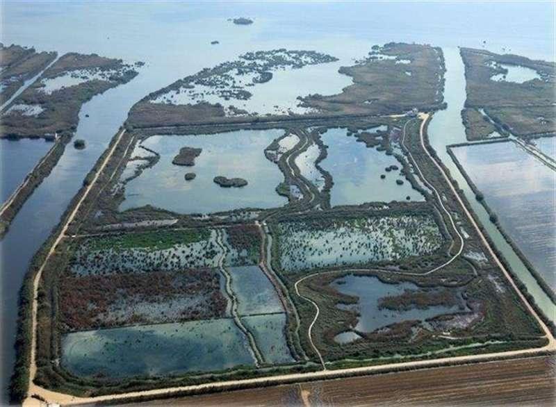 El lago de la Albufera de València en una imagen publicada por el Ayuntamiento de València en sus redes sociales.