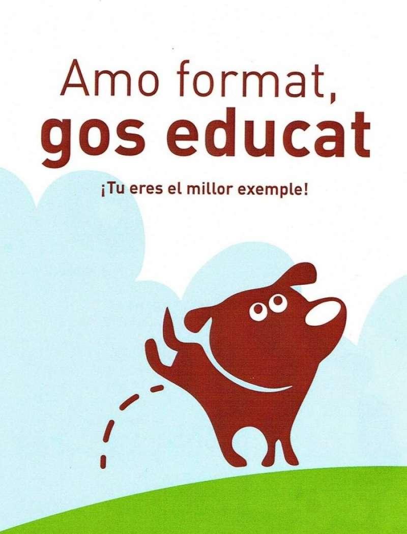 Foto campaña Ajuntament Alzira