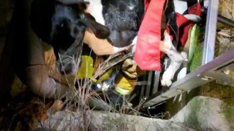 El rescate, en una imagen de los Bomberos.