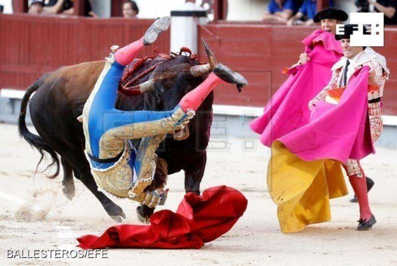 El diestro Román Collado, cogido por el primero de su lote durante su faena con la muleta en la corrida de ayer en Las Ventas. EFE