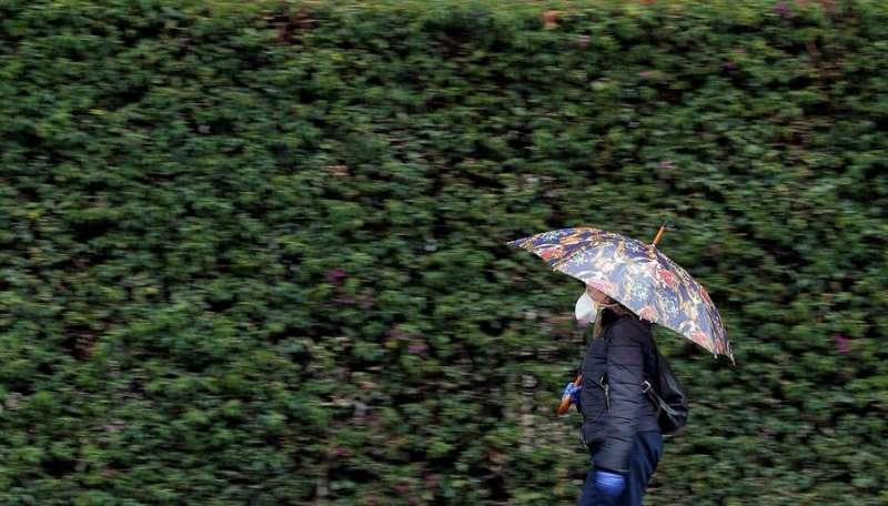 Una mujer se protege con un paraguas de la lluvia. EFE/Kai Försterling/Archivo