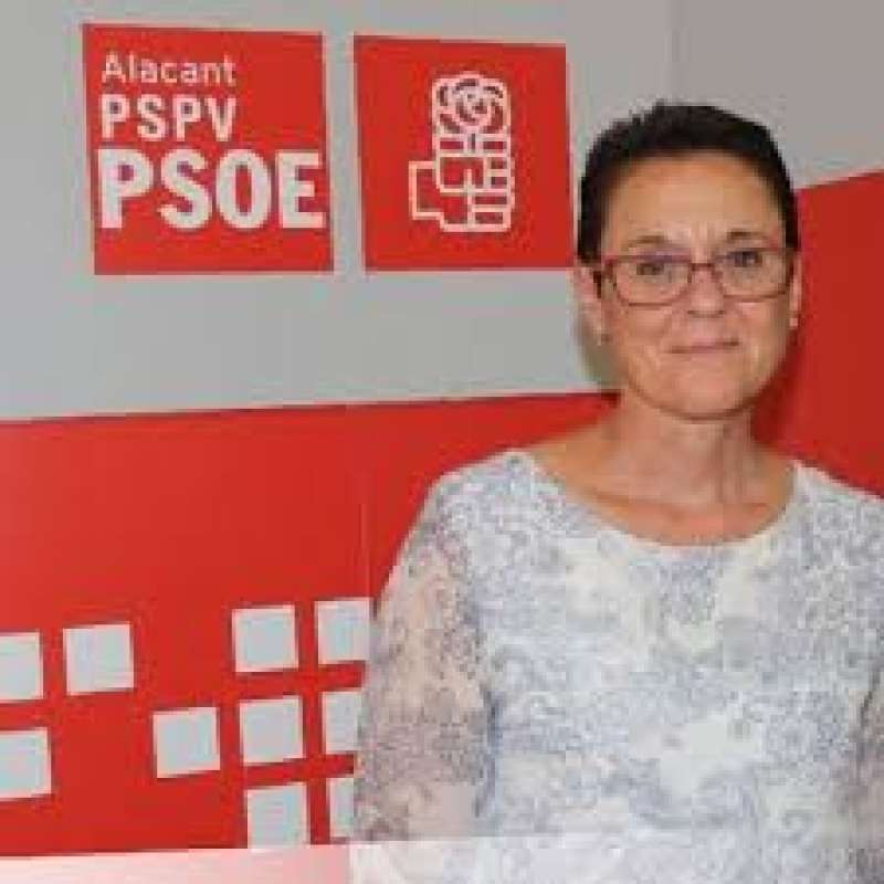 La diputada Toñi Serna. EPDA