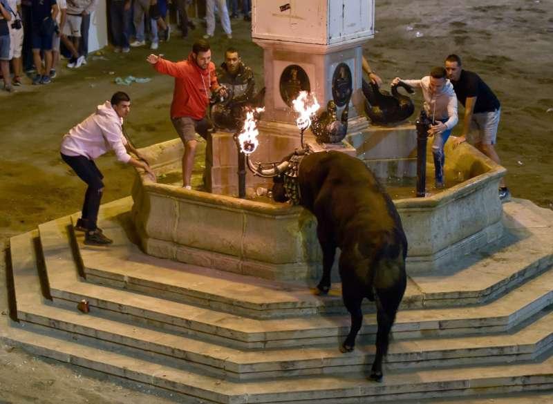 Toro embolado en Segorbe