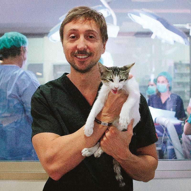 Jorge Llinás, director Hospital Veterinario Valencia Sur. EPDA