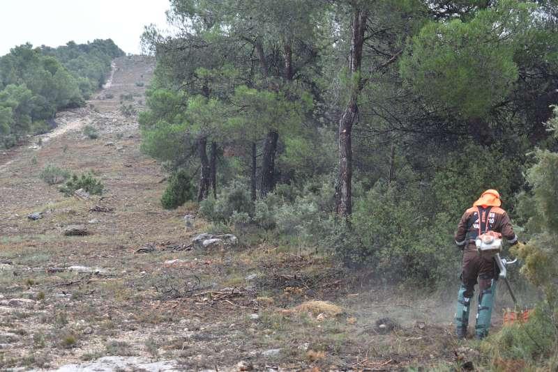 Un brigada forestal trabajando en el cortafuegos. EPDA